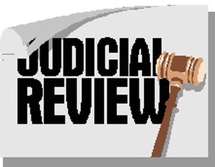 Judicial activism essay pdf